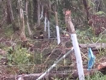 Terreno amplo no balneário Guaciara